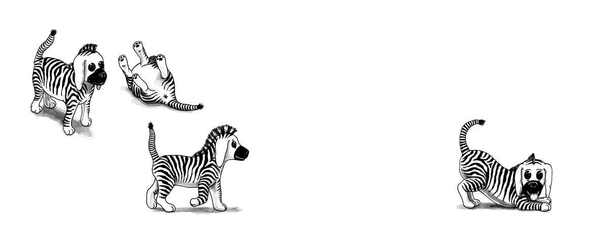 Zebra-Puppies,-C-W-Moss----379